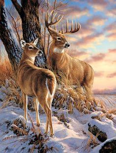 Terry Redlin Wildlife Prints by Rosemary Millette Wildlife Paintings, Wildlife Art, Animal Paintings, Animal Drawings, Drawing Animals, Horse Drawings, Drawing Art, Wild Life, Animals And Pets
