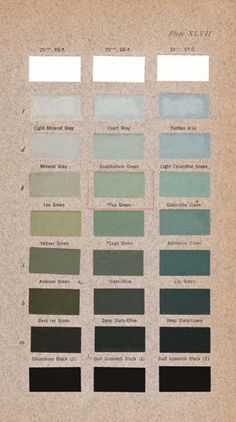 for my portfolio --- different skill listed as a 'colour' swatch?