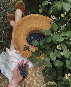 ig: guineverevonsneeden - a cozy soul Cottage In The Woods, Nature Aesthetic, Disney Aesthetic, Summer Aesthetic, Green Gables, Back To Nature, Country Life, Dream Life, Aesthetic Pictures