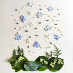 Jasmine, hydrangea, blue hosta, cedar berries, and privet. Can you spot the Big Dipper? Blue Hosta, Nature Collage, Plant Painting, Pressed Flower Art, All Nature, Flower Quotes, Traditional Paintings, Leaf Art, Nature Crafts