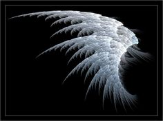 White Angel Wings wallpaper from Angels wallpapers Dark Angels, Dark Angel Wings, White Wings, Angels And Demons, Wings Wallpaper, Angel Wallpaper, Ange Demon, Learn To Fly, Wallpaper Downloads