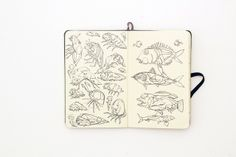 Sketchbook wonderings