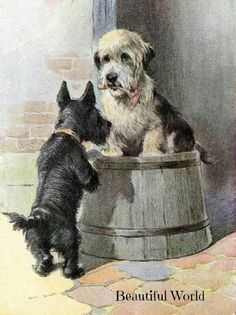 A Scotty and a Dandie Dinmont Terrier. Two of my favorites!