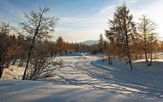 Winter Pictures 113