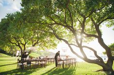 Getting ready for our Sunset Oceanfront reception under the canopy of the trees! At Kukahiko Estate a Bliss Maui Wedding property Maui Weddings, Hawaii Wedding, Destination Wedding, Wedding Day, Event Planning, Wedding Planning, Maui Wedding Photographer, Luxury Services, Just Relax