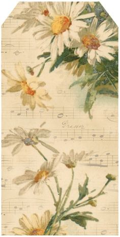 Bright-eyed Daisies ~ tag 6, featuring Catherine Klein daisies & French sheet music.