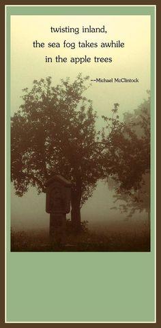 230 Best Autumn Poetry , How The Garden Smells Haiku Poems