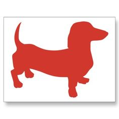 Doxie - Dacshund Post Card by knudsonstudios