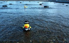 rubber duck regatta cincinnati 2014 - Google Search