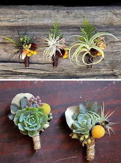 Obsessed with Flora Grubb's use of tillandsias in boutonnieres. Perfection.