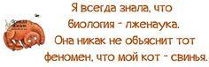 1378952996_frazochki-24.jpg (604×195)