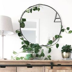 8 Amazing Room Decorations with Beautiful Indoor Plant Ideas - Trend Home Ideas Teal Wall Mirrors, Living Room Mirrors, Living Room Decor, Mirror Mirror, Mirror On The Wall, Living Rooms, Teal Walls, Plant Decor, Interior Decorating