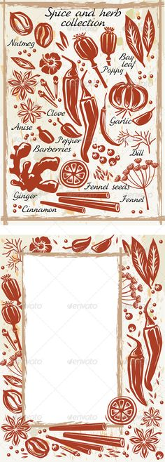 Realistic Graphic DOWNLOAD (.ai, .psd) :: http://sourcecodes.pro/pinterest-itmid-1006432267i.html ... Spice and Herb Collection ... Bay Leaf, anise, aroma, barberries, brown, chili, cinnamon, clove, dry, flavor, food, frame, garlic, ginger, green, herb, herbal, muscat, nutmeg, pepper, poppy, scent, spice ... Realistic Photo Graphic Print Obejct Business Web Elements Illustration Design Templates ... DOWNLOAD :: http://sourcecodes.pro/pinterest-itmid-1006432267i.html