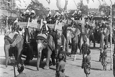 Elephants of the Aides-de-camps,  Delhi Durbar, 1903 Model site with colours