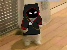 Minecraft Wallpaper, Minecraft Fan Art, Pop Cat, Cat Icon, Dream Friends, Cat Stands, Fandom Memes, Anime Cat, Small Cat