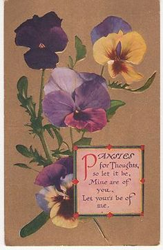 Vintage Greeting Postcard Pansies for Thoughts Purple Yellow Pansies on Gold | eBay