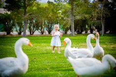 floyd Lamb Park Family Photos  #lasvegasphotographer