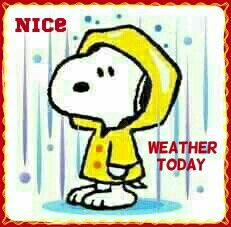 Rainy Day Snoopy