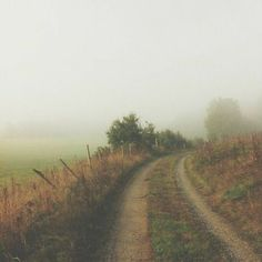 Foggy Morning, Champs, The Great Outdoors, Mists, Countryside, Paths, Places To Go, Beautiful Places, Country Roads