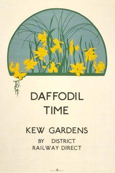 Daffodil time at Kew Gardens - Ugo Mochi (1923)