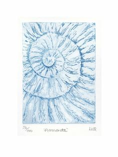 Etching no.26 of an ammonite fossil in an edition of 100 £30.00