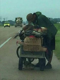 While driving home in Arkansas, Alicia saw a man pedaling his bike and carrying 10 dogs in a makeshift trailer. Neither Alicia nor the man had any idea their encounter would change their lives forever. Click on picture to see this wonderful story--RE PIN