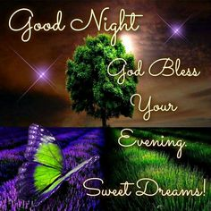 Good Night God Bless Your Evening. Sweet Dreams!