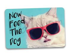 #fridgemagnets #magnets Now Feed The Dog Fridge Magnet. Lazy cat in shades pet feed reminder magnet. by BetterMagnets