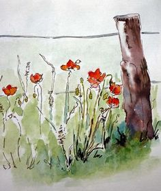 Let's have a little colour to lift this most miserable of summers. Poppies beside a fence post, pen and sepia ink, waterproof Pitt pen and watercolour. I am just doing a little experimentation with...