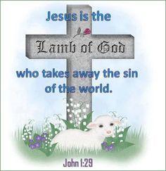 """John 1:29 (1611 KJV !!!!) """" The next day"""