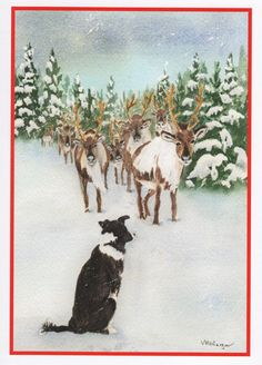 Christmas Border Collie Card.  Inside of card: Time to round up the Reindeer!  Merry Christmas by StellaJaneCards on Etsy