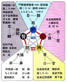 見島発 『五臓六腑を知る@』 - 見島人(Mishiman) Health Tips, Health Care, Body Stretches, I Ching, Fifth Element, Reflexology, Massage Therapy, Acupuncture, Health Remedies