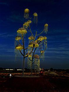 vibhor sogani's kalpavriksha is a huge wish-fulfilling tree