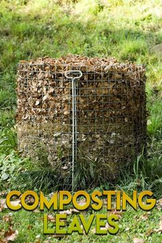 Preparing your garden soil is an important part of growing a successful garden. Read more here to learn what you need to do to get the healthiest soil. Compost Soil, Garden Compost, Garden Soil, Garden Care, Garden Landscaping, Composting, Landscaping Ideas, Gardening For Beginners, Gardening Tips