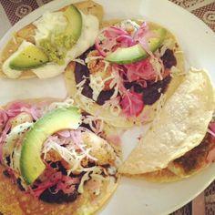 Breaded shrimp and squash blossom tacos at El Parnita