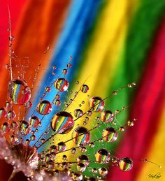 Rainbow Colors Photo - So Pretty !!