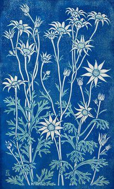 Flannel Flower II 49 x 30 cm Edition of 16 Reduction linocut on handmade Japanese paper $850