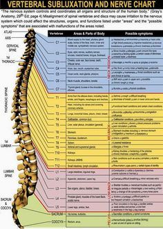 Chiropractic Care for the Entire Family..Including Children & Infants - Minnesota Miranda