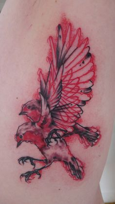 Red Hot + Blue Ian McAlister red black robin tattoo