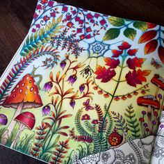 « Enchanted Forest Just finished the first page! I'll do the right corner later (no ideas haha!) #coloriage #johannabasford #foretenchantee…»