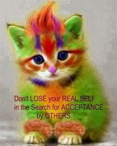 A cute cat says #cat #catquotes http://www.nojigoji.com.au/