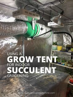 Grow Tent for Indoor Succulents: What to you need to know: A grow tent can be a great way to help keep… #PlantsandGardening #retainingwall
