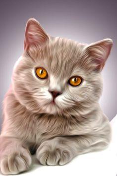 Amazing cat art