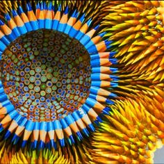 Leert uwe kleine hiermee maar eens binnen de lijntjes mee kleuren?!
