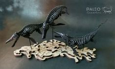 Discover a variety of prehistoric art & accessories of the ages. Bring the past back-to-life by building your own leather fossils, featuring Skelosaurz water-forming dinosaur kits, by Paleo Leather Sculpture Studio. Dinosaur Skeleton, Dinosaur Fossils, Natural Toys, Leather Art, Sea Monsters, Prehistoric, Paleo, Lion Sculpture, Puzzle