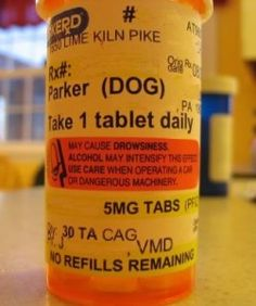 I sure hope this dog doesn't drink while taking these pills - http://lolsvillage.com/?p=7894