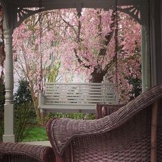 #blossoms #wicker #porch - @theycallmelouis