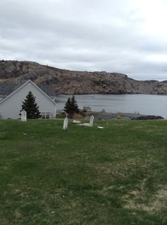 Avalon peninsula Newfoundland, Mountains, Nature, Travel, Viajes, Traveling, Newfoundland Dogs, Nature Illustration, Off Grid