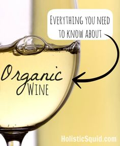 Is Organic Wine Better? - Holistic Squid