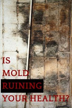 This one problem could explain multiple symptoms. Mold is the reason need to deal with water damage from a flood or pipe burst immediately.